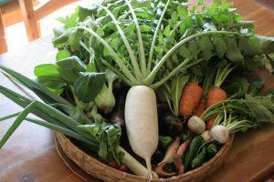 冷え 秋冬野菜
